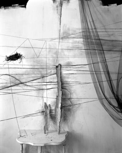 Lauren Semivan, 'Wishbones', 2011
