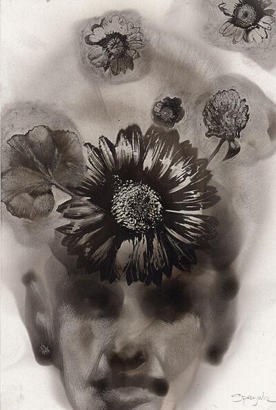 Steven Spazuk, 'Flower Imprints', 2016