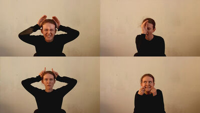 Mihai Iepure - Gorski, 'Animal Faces', 2012