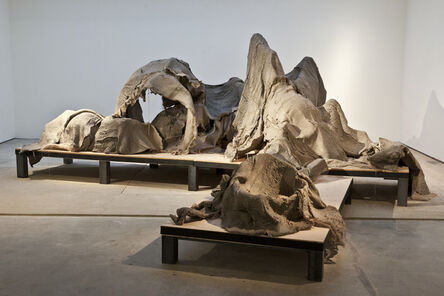 Douglas White, 'New Skin for an Old Ceremony', 2011