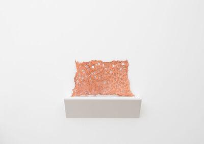 Tanya Aguiñiga, 'Preserve 1', 2015