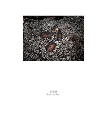 Osamu James Nakagawa, 'hand grenade', 2001-2009