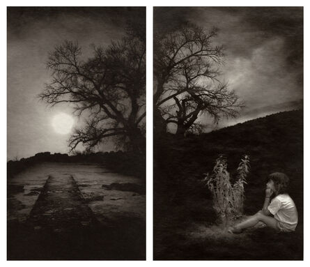 Jennifer Schlesinger, 'Here nor There 4&8 (diptych)', 2011