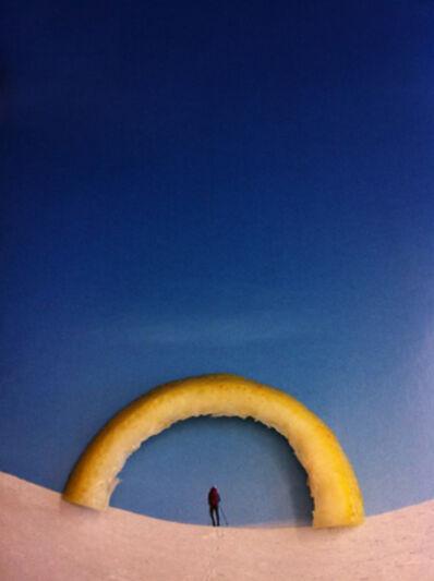 "Nina Katchadourian, 'Lemon Arch (""Seat Assignment"" project, 2010--ongoing)', 2015"