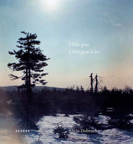 Alicja Dobrucka, 'I like you, I like you a lot', 2019