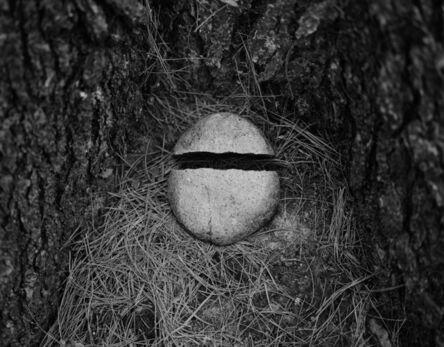 Daniel Coburn, 'Untitled', 2017