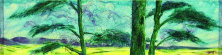 Marian Bingham, 'Spruce', 2012