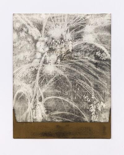 Lucas Reiner, 'Fireworks in June #2', 2005