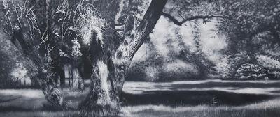 Stephan Kaluza, 'Still no.7', 2014