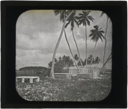 Augustus Le Plongeon, 'St. George's Cay, Colonial Cemetery, Belize', 1873-1924