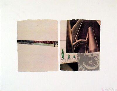 Robert Rauschenberg, 'Untitled (plants)', 1971