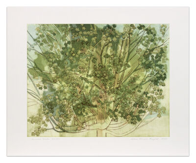 Sylvia Plimack Mangold, 'Summer Maple', 2008