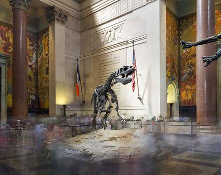 Matthew Pillsbury, 'Dinosaur, American Museum of Natural History', 2015