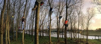 Ellen Kooi, 'Katwijk - bomen', 2005