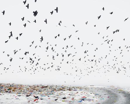 Tamas Dezso, 'Dump (Near Aiud, West Romania) ', 2012