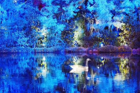 Mitchell Funk, 'Blue Duck ', 2012