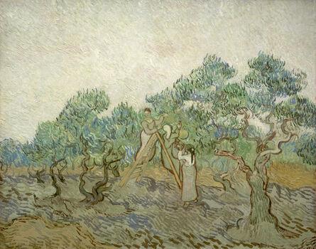 Vincent van Gogh, 'The Olive Orchard', 1889