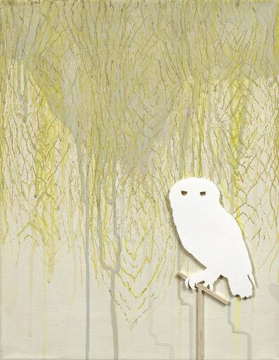 Kathleen O'Hara, 'Forest Owlet', 2017
