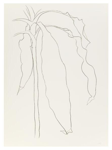 Ellsworth Kelly, 'Dracena I ', 1983-1985