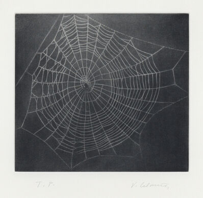 Vija Celmins, 'Untitled (Web I)', 2001