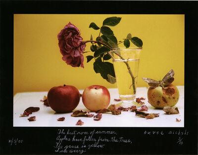 Duane Michals, 'The last rose of summer', 2005