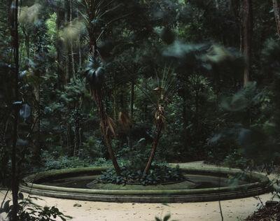 Caio Reisewitz, 'Hausverlassung', 2015