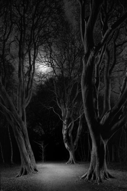 Jasper Goodall, 'Twilight #35, Silver Path', 2021