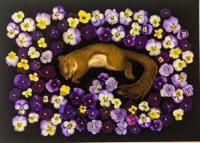 Portia Munson, 'Red Squirrel', 2016
