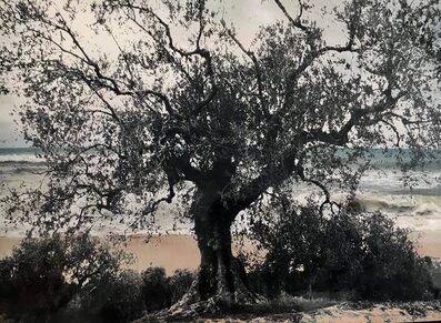 Marianne Catzaras, 'Derrière la Mer', 2018