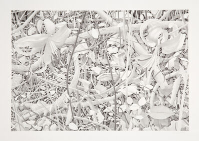 Bill Richards, 'Flowers and Branches', 2009