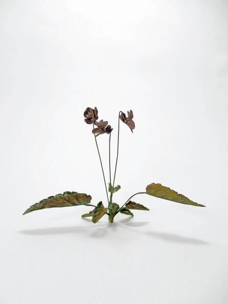 Shota Suzuki, 'Violet', 2017