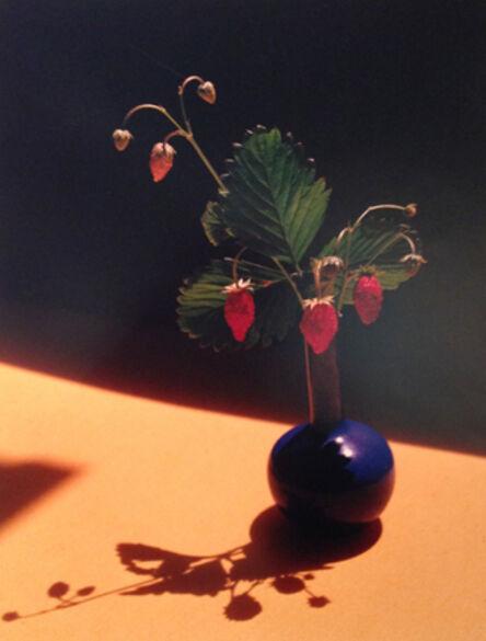 Horst P. Horst, 'Strawberry in Blue'