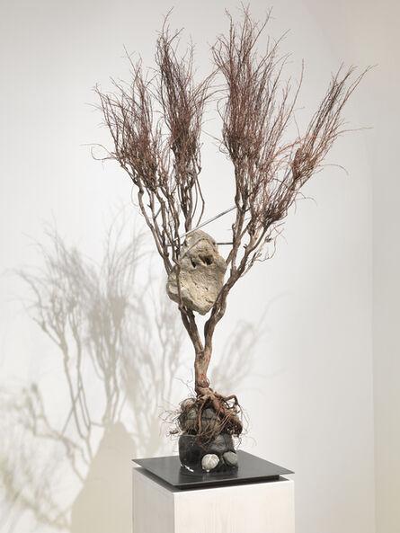 Rebecca Horn, 'Metamorphosis Ovidio', 2012