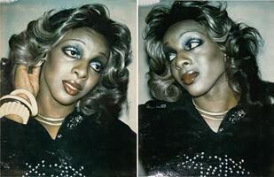 Andy Warhol, 'Ladies & Gentlemen (E.M.)', 1974