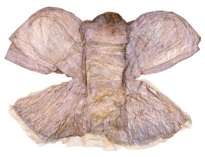 Heidi Bucher, 'Libellenkleid (Dragonfly costume object)', 1976