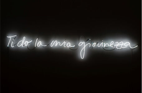 Mircea Cantor, 'Ti do la mia giovinezza', 2014