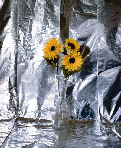 Clegg & Guttmann, 'Plastic Sun Flowers', 2019