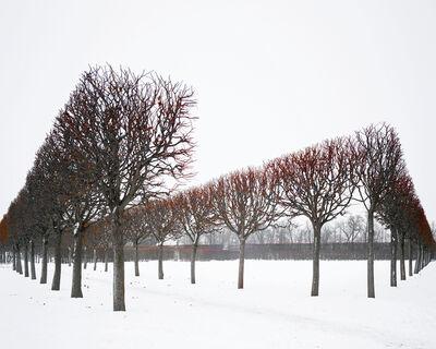 David Burdeny, 'Winter Red,  Catherine Palace, Pushkin, Russia', 2015