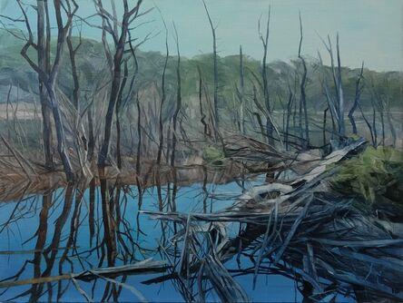 Nicholas Blowers, 'Savage Pond I Study', 2018