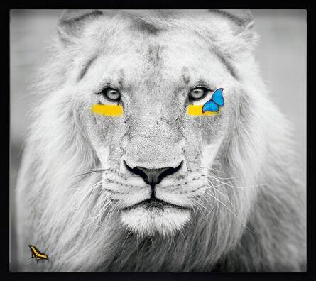 SN, 'Lion XL'