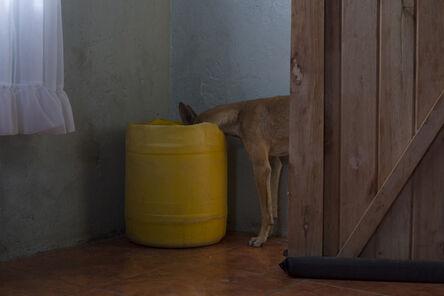 Mack Magagane, 'Dog', 2014