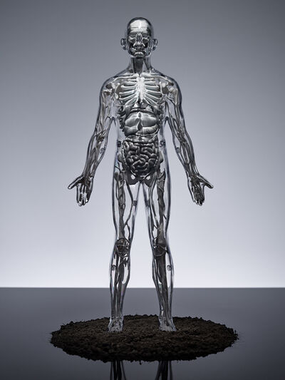 Omar Torres, 'Human', 2015