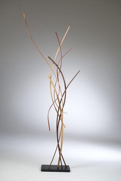 John Schwartzkopf, 'Rhythm', 2009