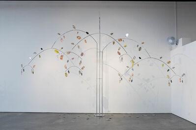 Catherine Daley, 'Quercus illuminosa', 2019