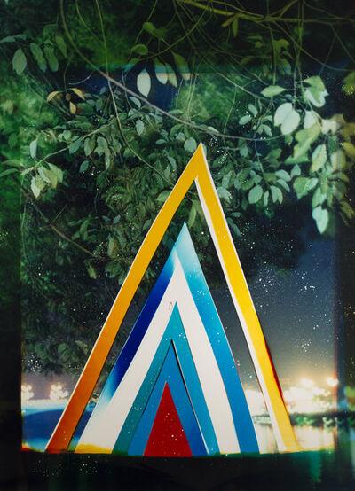 Liz Nielsen, 'Rainforest Portal', 2018