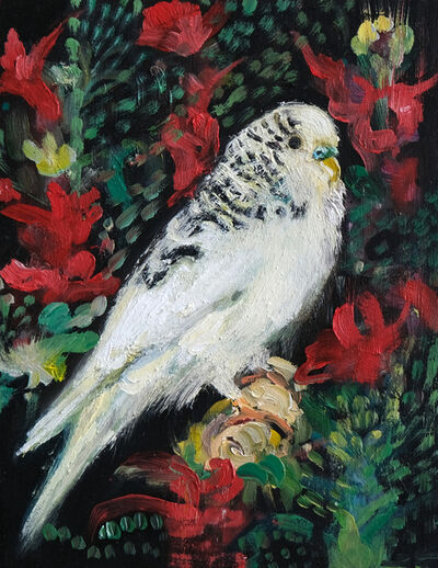 Katrine Claassens, 'Decorated Budgie', 2020