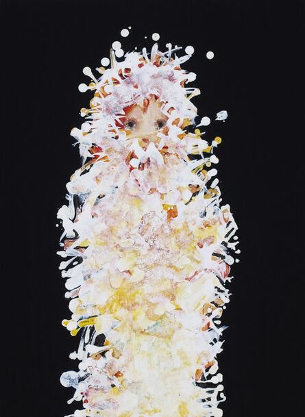 Chisato Tanaka, 'Evolver', 2014