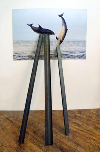 David Brooks, 'Entangled Image (Short-beaked common dolphins)', 2013