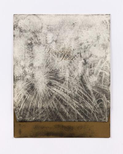 Lucas Reiner, 'Fireworks in June #5', 2005
