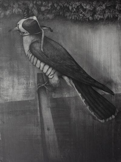 Dan Beudean, 'The Cuckoo Bird', 2012